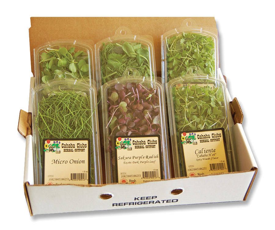 Chefs Toy Box 9 Pack